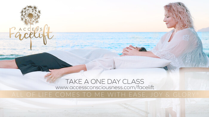 Facelift_GROUP-OneDayClass